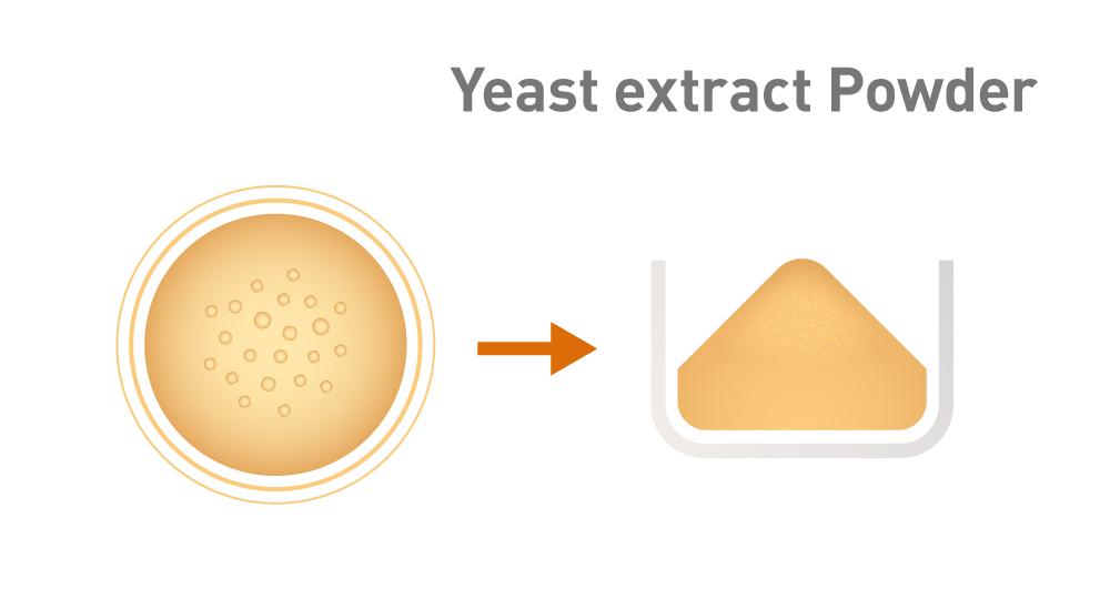 Grafik Herstellung Hefeextrakt Trocknen
